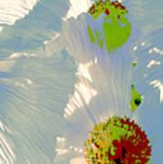 Matilija Poppies Pop Art Art Print