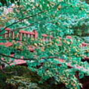 Matthiessen State Park Bridge False Color Infrared No 1 Art Print