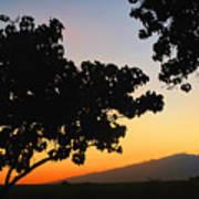 Maui Road Sunset Art Print