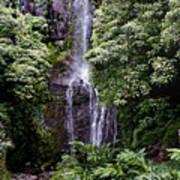 Maui Waterfall Art Print