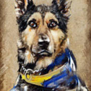 Max The Military Dog Art Print