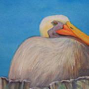 Mayport Florida Pelican Art Print