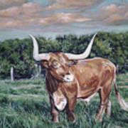 Mays Longhorn Art Print