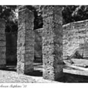 Mcintosh Sugar Mill Tabby Ruins 1825  Art Print