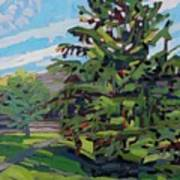 Mcmichael Spruce Art Print
