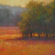 Meadow Glow Art Print