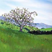 Meadow In Early March Art Print