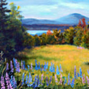Meadow Lupine II Art Print by Laura Tasheiko