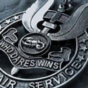 Medal Art Print