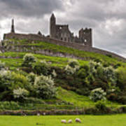 Medieval Rock Of Cashel Ireland Art Print