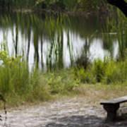 Meditation Spot By A Pond Art Print