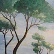 Mediterranean Pines Art Print