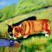 Meeting Mr. Frog Corgi Pups Art Print by Lyn Cook