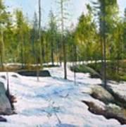 Melting Snow At Umea Norrbotten Sweden 2002   Art Print