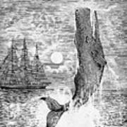 Melville: Moby Dick Art Print by Granger