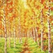 Memories Of The Birch Country Art Print