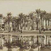 Men With Goats Under Palm Trees On The Water In Bedrechen, Bonfils, C. 1895 - In Or Before 1905 Art Print