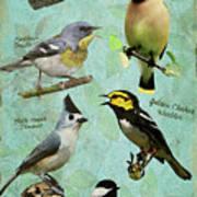 Meridian State Park Art Print