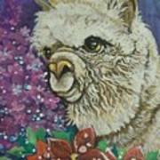 Merry Christmas Alpaca Art Print