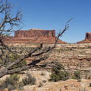 Mesas Near Moab Art Print