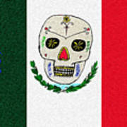 Mexican Flag Of The Dead Art Print