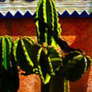 Mexican Style  Print by Susanne Van Hulst