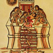 Mexico: Aztec Sacrifice Art Print