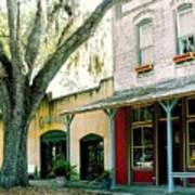 Micanopy Storefronts Art Print