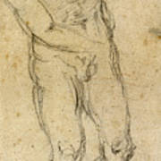 Michelangelo: Male Nude Art Print
