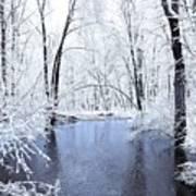 Michgan Winter 10 Art Print