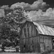 Michigan Old Wooden Barn Art Print