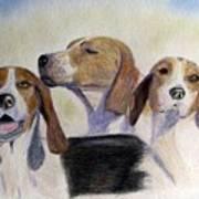 Middleburg Hounds Art Print
