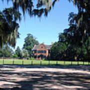 Middleton Plantation Charleston Sc Art Print