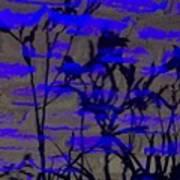 Midnight Lillies Art Print