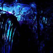 Midnight Serenity Art Print