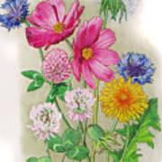 Midsummer Day Dream Art Print