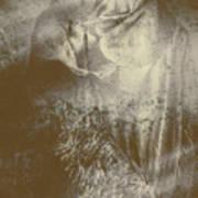 Mildew The Scarecrow Art Print