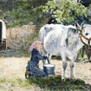 Milking, 19th Century Art Print