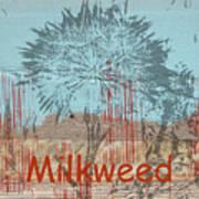Milkweed Collage Art Print