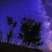 Milky Way And Silhouette Trees At Bruneau Dunes State Park Idaho Art Print