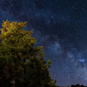 Milky Way Over The Forest At The Troodos Mountains In Cyprus. Art Print