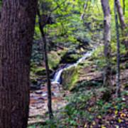 Mill Creek Falls Art Print
