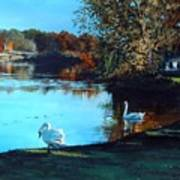 Mill Pond Art Print