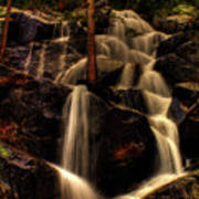 Quaking Aspen Falls Along Tioga Pass  Art Print