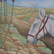Miner's Companion Art Print