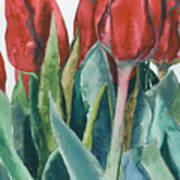 Mini-valentine Tulips - 2 Art Print
