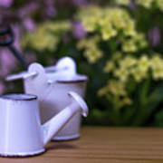 Miniature Gardening Kit With Pink And Yellow Kalanchoe Backgroun Art Print
