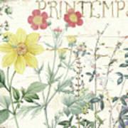 Mirabelle IIi Art Print