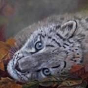 Mirucha In Fall Art Print