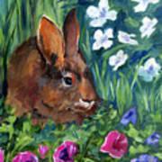 Miss Bunny Art Print